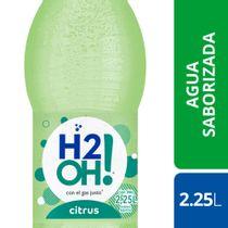 AGUA-FINA-SABORIZADA-CITRUS-H2OH-225-L