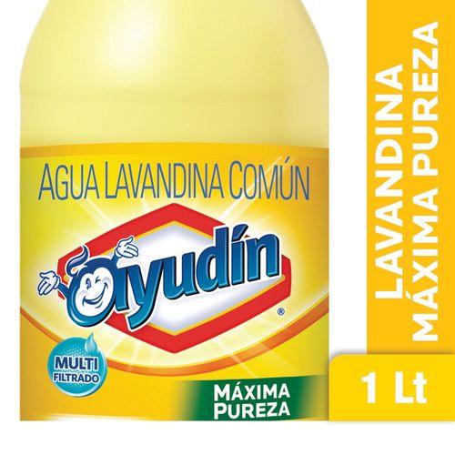 LAVANDINA-MAX-PUREZA-AYUDIN-1LT