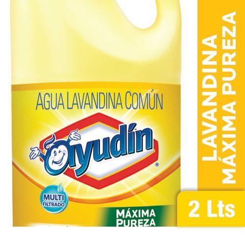 LAVANDINA-AYUDIN-MAXIMA-PUREZA-2LT