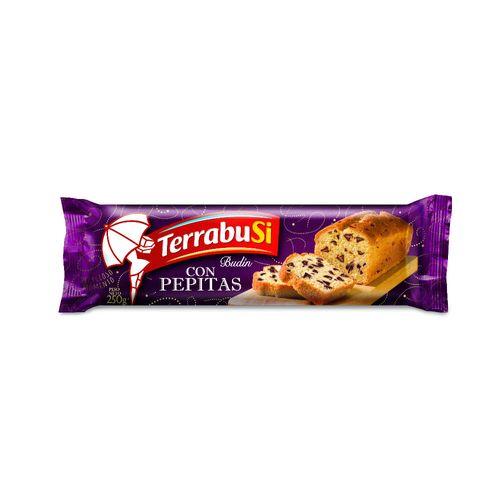 BUDIN-CON-PEPITAS-DE-CHOCOLATE-TERRABUSI-250GR