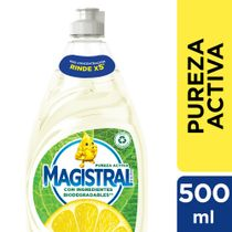 LAVAVAJILLAS-PUREZA-MAGISTRAL-500ML