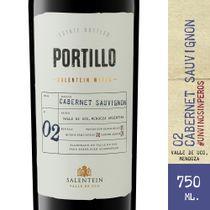 Vino-Tinto-Portillo-Cabernet-Sauvignon-750-ml
