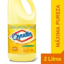 Lavandina-Ayudin-Maxima-Pureza-2-Lts