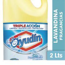 Lavandina-Multisuperficies-Ayudin-Pureza-Glaciar-2-Lts-_1